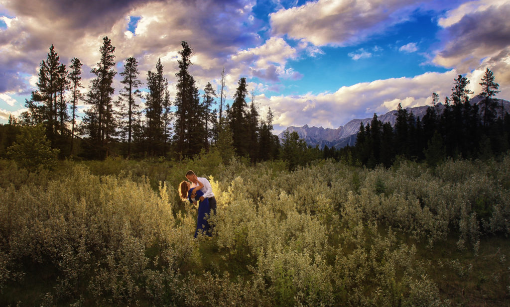 Sunset & Wold Willow, Engagement picture, Canmore, In the wolf willows, Banff wedding photographers, Burnett Photography