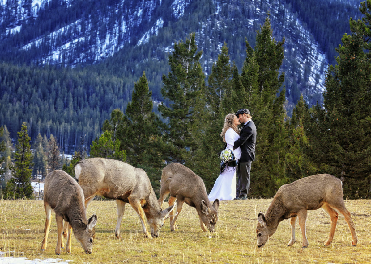 Winter Elopement in Banff National Park