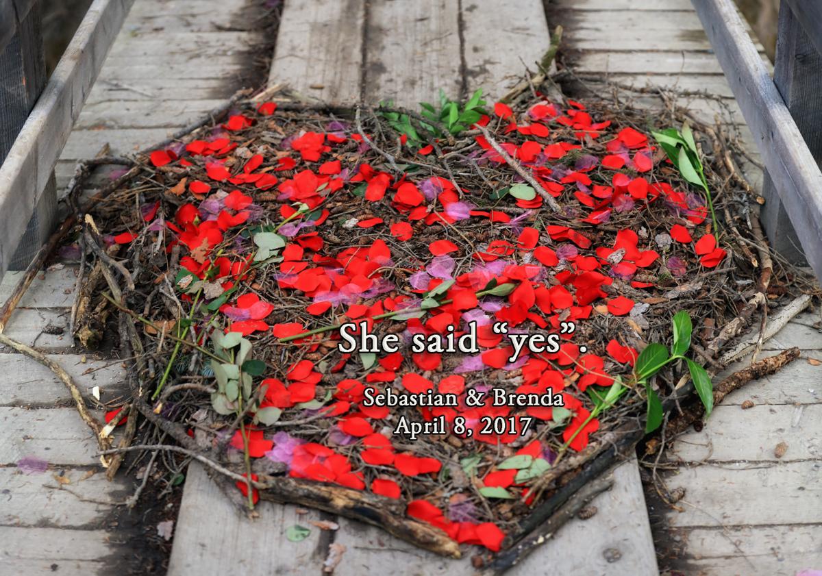 Romantic Marriage proposal ideas, Banff photographers, Burnett Photography